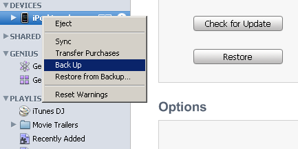 backup before iOS 4