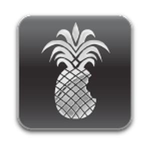 iOS 4.3 pwnagetool