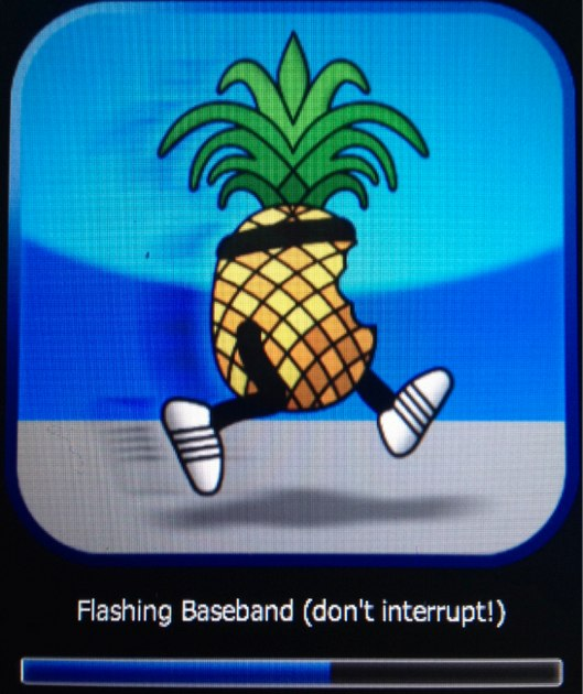 Flash iPad Baseband